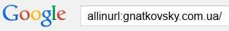 Гугл проверка индексайии всего сайта