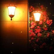 Анимация светляки