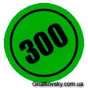 300 записей на блоге